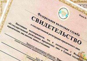 Регистрация ИП пошаговая инструкция от dela.biz