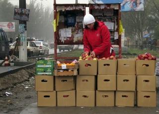 организация уличной торговли в согласии с законом