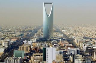 бизнес идеи для инвестирования в Саудовскую Аравию