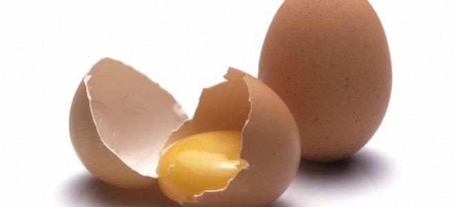 Продажа готового бизнеса по производству яичного порошка из рук в руки н новгород частные объявления