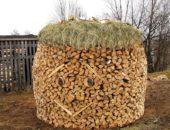 Бизнес на дровах в деревне