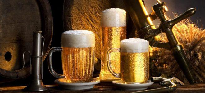 Мини-пивоварня как бизнес