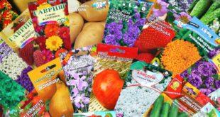 Продажа семян цветов