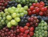 Выращивание винограда как бизнес