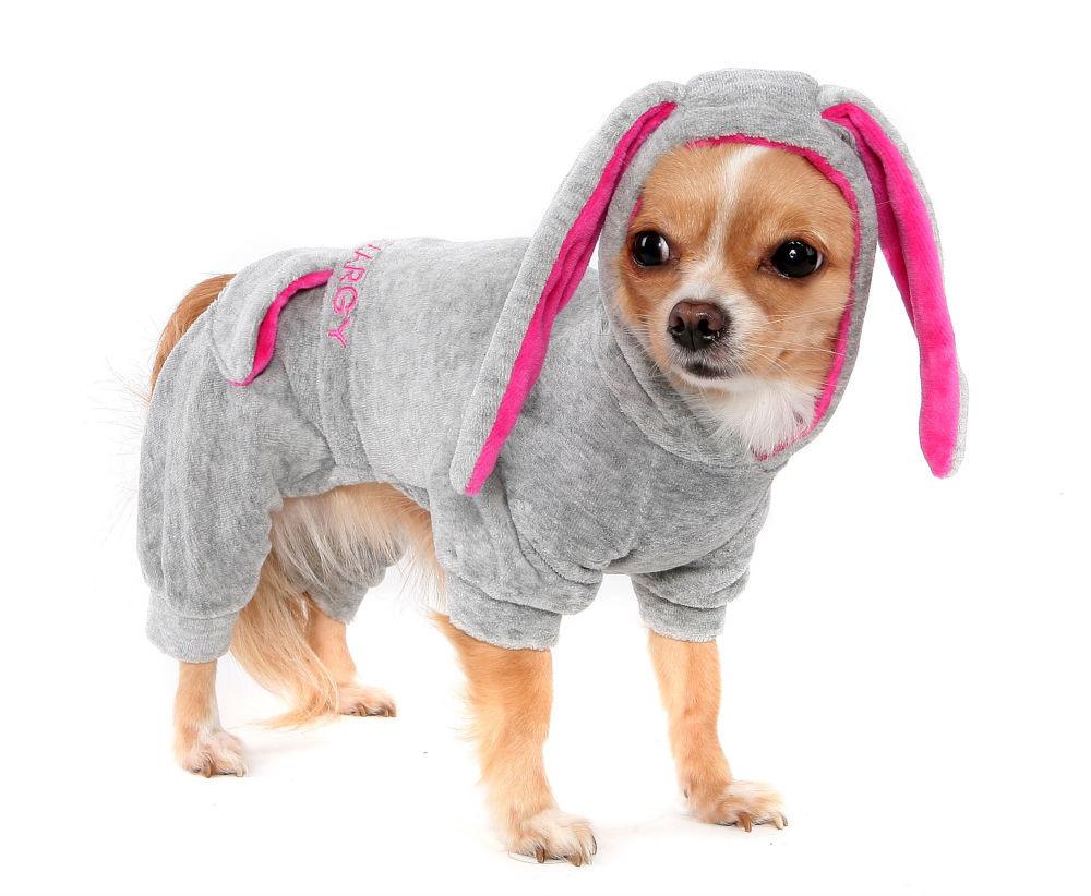 Платья для собак в спб
