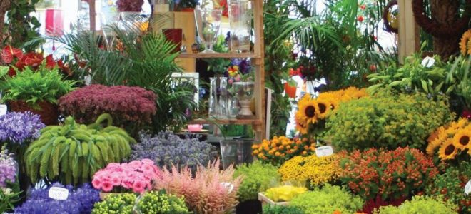 Хорошая идея для бизнеса – цветочный бизнес.
