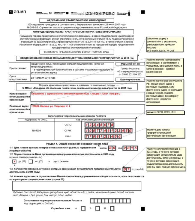 Образец отчетности для организаций