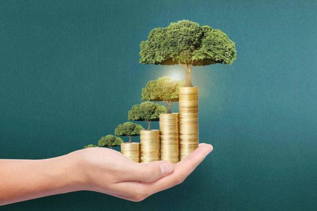Стопки монет с деревьями наверху