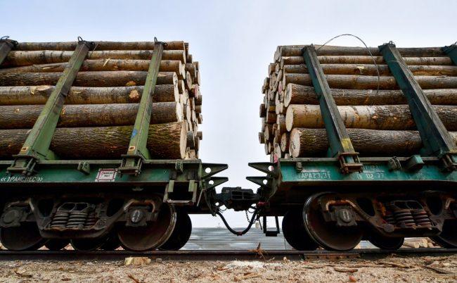 Вагоны с древесиной